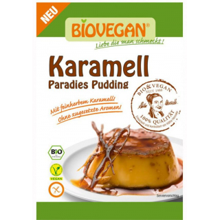 Biovegan Paradies Pudding Karamell 43g Packung