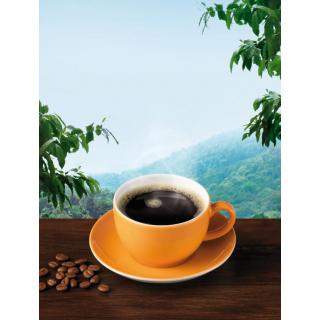 Lebensb Plantagenkaffee ganze Bohne 250g Packung
