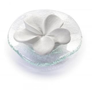 Primavera life Duftstein Frangipani mit gewelltem Glasteller 1 Stück